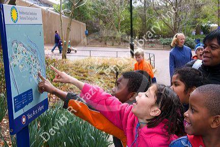 Children Point At A Map Of The National Zoo In Washington D C