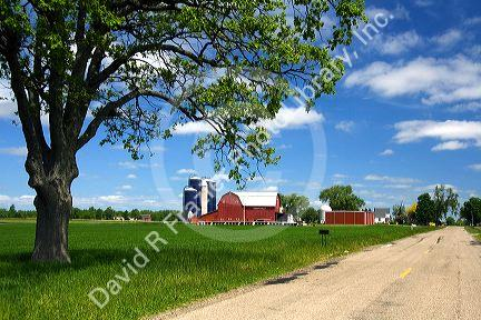 Farm surrounded by green unripe wheat at St. Louis, Michigan. PR