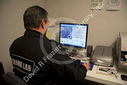 Fingerprint analyst using a computer to classify fingerprints in a crime laboratory.