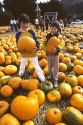 Two young boys holding pumpkins in a pumpkin patch.