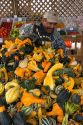 A mexican farm worker with gourds at a farmers market in Fruitland, Idaho.