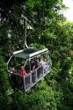 Tourists ride an aerial tram ride through the rainforest canopy of Veragua Rainforest Research and Adventure Park near Limon, Costa Rica.